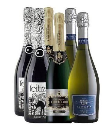 Pack de Espumosos,Proseccos & Champagnes