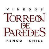 Viña Torreon de Paredes